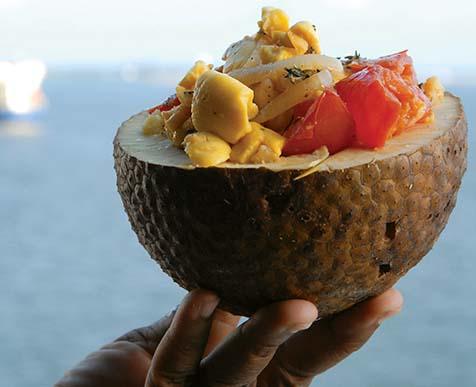 breadfruitpraise