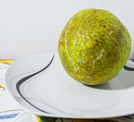 breadfruit-on-a-plate