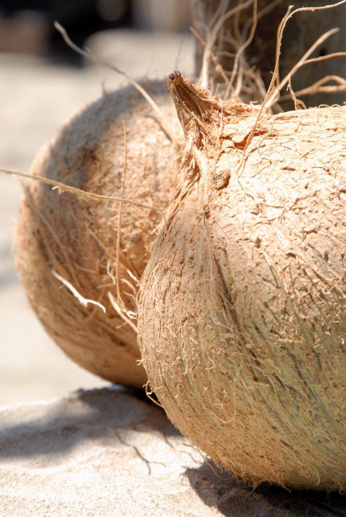 hard-coconut