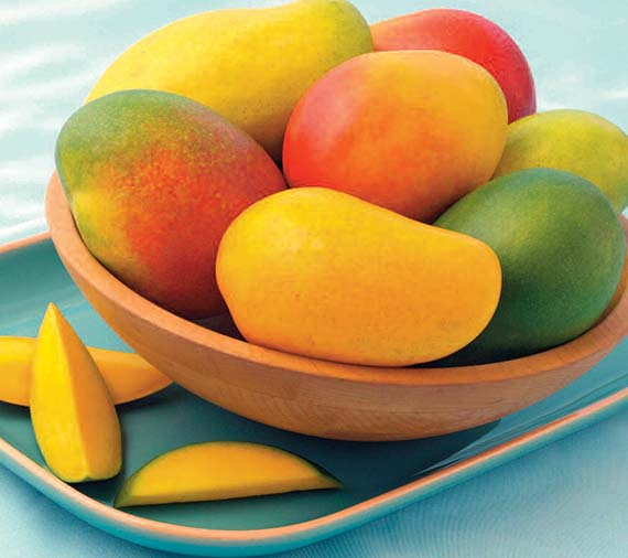 mango pages